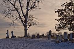 Roebuck Cemetery (ramseybuckeye) Tags: supermulticoated takumar 55 18 monochrome version roebuck cemetery frysinger road near rockford mercer county ohio pentax art life