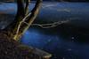 Winter lake (IV) (dididumm) Tags: blue blues winter snow ice lake frozen tree sunshine sonnenschein baum gefroren see eis schnee blau