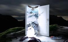 Carlos Atelier2 - Lobos (Carlos Atelier2) Tags: carlos atelier2 lobos neve noite montanha porta branca aberta