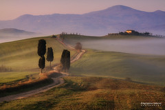 The Gladiator's Road (Agrippino Salerno) Tags: valdorcia tuscany italy pienza terrapille agrippinosalerno canon manfrotto morning farmhouse fog mist cypress countryside colors countryroad sunrise travel tree sky