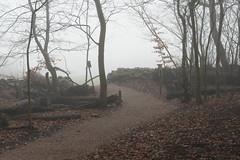 Crossing the edge (JRAMFotograf) Tags: stonewall road leaves fog trees path