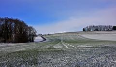 Lignes d'hiver (Diegojack) Tags: hiver froid neige glace vaud campagne perspectives bremblens