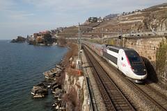 TGV Lyria des neiges entre Rivaz et St-Saphorin (eisenbahnfans.ch) Tags: 4417 fsncf lacléman riv rivaz sbbcffffs stsaphorin stsa tgv tgvdesneiges tgvlyria tgvpos