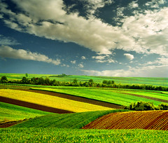 Nature is the best creator (Katarina 2353) Tags: landscape spring serbia fields vojvodina serbiainspired