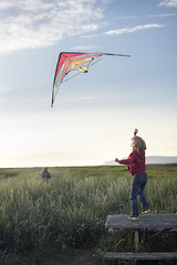 Up (Dalla*) Tags: summer kite playing color colour beach nature boys grass kids outside evening iceland play bright brothers summernights álftanes wwwdallais