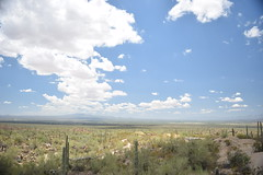 Landscape on the Sonoran Desert in Arizona, USA (Glauber Moreira) Tags: blue arizona nature sonora landscape desert