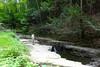 Stair Park (pecooper98362) Tags: newyork waterfall valley vestal aboyandhisdog stairpark limestonesteps fullerhollowcreek notharlanellison