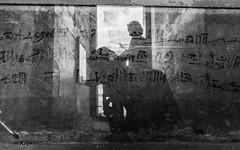 Saqqara Reflection