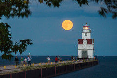 Full Moon Promenade