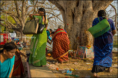 Women. T Narsipura (Claire Pismont) Tags: asie asia inde india travel travelphotography karnataka tnarsipura tnarsipur pismont clairepismont colorful couleur color colour woman women banyan tree travelshot hinduism hindouisme holy hindu colors