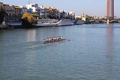 Sur le Guadalquivir (hans pohl) Tags: espagne andalousie séville fleuves rivers cities villes houses maisons buildings bateaux ships ponts bridges