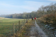 A family Winter walk around the magnificent Hucking Estate (favmark1) Tags: hucking huckingestate winter walk 2017 365 365challenge day22