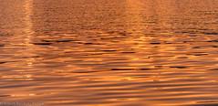 Sunset water reflection (Robert Benatzky Picture) Tags: wasser water warmlights warmeslicht lichtreflektionen reflektionen lights lightreflection waterreflection robertbenatzkypicture hamburg alster sunset