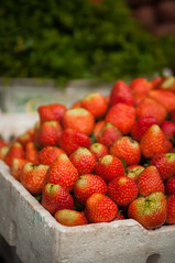 strawberries (Sam Scholes) Tags: shopping bedugul market vacation indonesia bali travel baturiti id