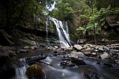Waterfall (joshuawoodhead) Tags: tasmania lilydale waterfall nature water long exposure green rocks landscape