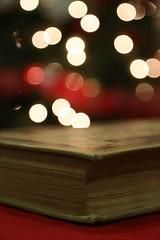 Missing lights (Rod Anzaldua) Tags: book bokeh libro lights christmas holidays navidad fiestas tree arbol