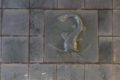 Wels (michael_hamburg69) Tags: hamburg germany deutschland esplanade esplanadebau kontorhaus büro office artdeco jugendstil esplanade6 fliesen tiles kacheln meeresthema meeresmotiv sea meer animals tiere wels catfish photowalkmitkatrin photowalkmitglaesmann