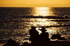 Enjoying The View Sunset 🌅 ☀️ Two People Hat Silhouette Beauty In Nature Horizon Over Water Seaside Sea Sky Hayama Kanagawa Kanagawa,japan December December 2016 (T.M Photos) Tags: enjoyingtheview sunset twopeople hat silhouette beautyinnature horizonoverwater seaside sea sky hayama kanagawa japan december december2016葉山