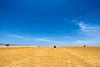 Solitude (chuanet) Tags: sonya7 canon1740mmf4l landscape sky blue peru availablelight outdoor paracas pisco ica sunny desert pacific ocean viltroxefnexii sand loneliness dry ngc