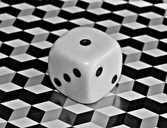 "B & W Dice ""In Explore"" (Isabelle T) Tags: macromondays bw black white monochrome"