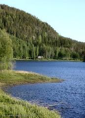 20150612078280 (koppomcolors) Tags: sweden sverige scandinavia värmland varmland koppom skillingmark koppomcolors