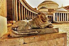 Napoli - Piazza del plebiscito (gianclaudio.curia) Tags: napoli nikon d7100 digitale piazza seppia statua sigma sigma1020