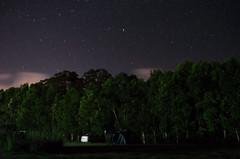 Australia (Björn O) Tags: australia australien queensland stars sterne longexposure langzeitbelichtung sternenhimmel camping zelten tent outdoor outdoors nacht night milchstrase milkyway
