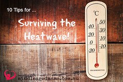 surviving the heatwave weather (jancamilleri) Tags: meteorology extremesports heatwave fever summersolstice thermometer weather measuring sweat heattemperature control climate nature plant summer season ambiance hotter