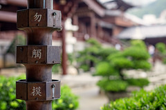 Downpipe (Katka S.) Tags: hong kong china city metropole downpipe metal architecture buddhistic temple shallow dof place worship chinese green garden