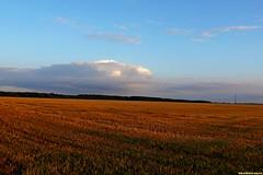 Аромат свежескошенной травы обдавал наши сердца сладким теплым южным ветром. Мы крутились по опушкам и перелескам, однако, место ночевки нашли не сразу. Наш пробег в этот день составил 105 км.