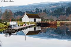 La quiete del pescatore (antonio.canoci) Tags: fort august scozia riflessi skyfall loch ness highlands canon 70d 1585usm