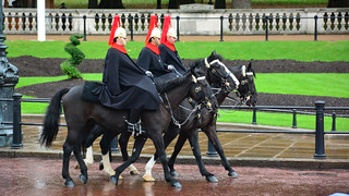 Household Cavalry, Blues & Royals