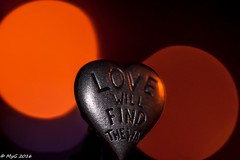 Love will find the way  ! (Mike Y. Gyver ( Organize in Albums)) Tags: love way bokeh belgium myg sigma105mmmacrof28exdgoshsm night red macro