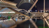 Valencia, Spain: Museo de las Ciencias at the City of Arts & Sciences (nabobswims) Tags: cityofartssciences ciutatdelesartsilesciències es hdr highdynamicrange lightroom museodelascienciaspríncipefelipe museum nabob nabobswims night photomatix reflectingpool sel18105g sonya6000 spain symmetry valencia valència