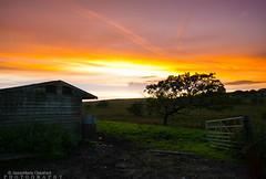 Sunset in Wales (JamieMarie Oaksford) Tags: wales walesuk breconbeacon natioanlpark sunset countryside uk landscape landscapephotography sunsetphotography walescountryside lushgreen