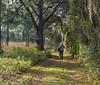 Happy Trails to You (11Jewels) Tags: canon 70300 redtrail oscarschererstatepark ospreyfl florida trailthursday