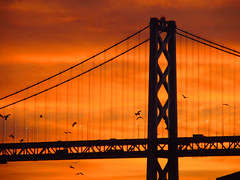 "Bay Bridge Sunrise! (""Cisco Kid"") Tags: photoshop color sunrise sun morning light red skies bay bridge birds san francisco"