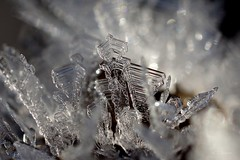 Eiskristall  / ice crystal (4) (Ellenore56) Tags: 06012017 eiskristall eiskristalle kristall eis ice crystal xtal 14°c frost iceneedles diamond icecrystal wasser water h2o strengerfrost frostig freezing freeze kalt cold cool severefrost wetter weather detail moment augenblick makro macro perception perspektive perspective reflektion reflection reflexion farbe color colour licht light inspiration imagination faszination magic magical sonyslta77 ellenore56 eiszeit glacial glacially glitzer glitzern glitter sparkle iceglitter twinkle eisig freezingcold struktur structure