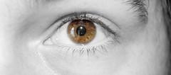#FlickrFriday -- See Through (bboneyardd) Tags: flickrfriday seethrough flickrfridayseethrough selective colour blackandwhite monochrome reflection natural light brown eyeball surreal low contrast nikond5200 nikon d5200 kit lens eye people