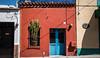 2016 - Mexico - Querétaro - Where Cacti Grow (Ted's photos - For Me & You) Tags: 2016 cropped mexico queretaro santiagodequeretaro tedmcgrath tedsphotos tedsphotosmexico vignetting nikon nikonfx nikond750 cacti bluedoor shadows shadow