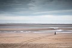 on the way (ylemort) Tags: mer merdunord sea zee nordzee beach belgium belgique color canon canon5dmkiv