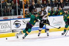 "Missouri Mavericks vs. Quad City Mallards, January 21, 2017, Silverstein Eye Centers Arena, Independence, Missouri.  Photo: John Howe / Howe Creative Photography • <a style=""font-size:0.8em;"" href=""http://www.flickr.com/photos/134016632@N02/32487056016/"" target=""_blank"">View on Flickr</a>"