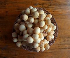 L-Q4-10-05_14h56'14''_[X-fm3971]_HD3_ (fm&hg) Tags: food brown macro fruits yellow table wooden juicy flora asia basket sweet philippines tasty exotic snack round tropical bunch ripe nutritious paleyellow lanzones lansiumdomesticum langsat lansium meliaceae longkong