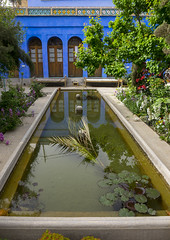 Dibai Heritage House Guesthouse, Isfahan Province, Isfahan, Iran (Eric Lafforgue) Tags: blue tree green tourism nature water vertical gardens garden outdoors photography hotel pond asia iran persia nobody nopeople basin greenery orient esfahan guesthouse isfahan basins ispahan   colourimage  iro isfahanprovince  sepahan spadana  hispahan iran150070