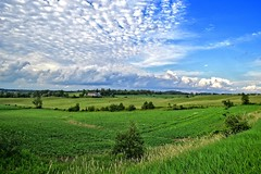 Pasture under the fluffy clouds (fool's itch) Tags: summer green rural landscape pasture fields skyandclouds fluffyclouds southwesternontario perthcounty outdoorshot
