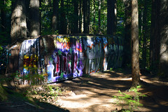 SECRETS OF THE FOREST (DESPITE STRAIGHT LINES) Tags: trip trees vacation holiday canada tree art tourism nature beauty forest train whistler graffiti artwork woods woodlands flickr bc artistic crash accident hiking walk britishcolumbia decay scenic roadtrip september foliage olives damage gondola boxcar wreck naturalbeauty mothernature boxcars cheakamusriver paulwilliams whistlermountain functionjunction peak2peak despitestraightlines ilobsterit whistlerblackcombvillage thecrystallodge thecrystallodgewhistler olivescommunitymarket olivescommunitymarketwhistler thetrainwreckwhistler trainwrecknearwhistler trainwreckinwhistlerbc thetrainwreckatfunctionjunction functionjunctionwhistler thetrainwrecknearfunctionjunction cheakamusfalls burntstewcafebc burntstewcafewhistler