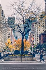 NYC--28 (Pixelicus) Tags: ny nyc newyorkcity newyork street streetphotography