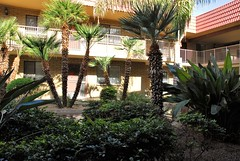 20161214   Ruth's Courtyard and Front Door (lasertrimman) Tags: 20161214 wooddale village retirement community wooddalevillageretirementcommunity suncity az ruths courtyard front door ruthscourtyardandfrontdoor ruth
