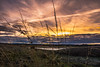 _MG_4239 (adamstrebor) Tags: scotland spey bay highland sunset clouds colours canon 760d
