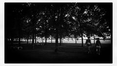 IMG_4479 (Bruno Meyer Photography) Tags: berlin iloveberlin visitberlin deutschland night people streetphotography walk silhouette shadows photography travelphotography travel leica leicaimages leicacamera leicadlux5 leicacamerafrance raw edit blackandwhite blackandwhitephotography archives 2016 summer summernight